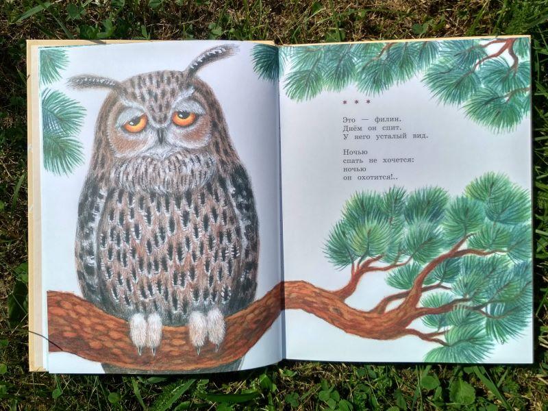 Кто самый добрый? Эмма Мошковская. Стихи про животных для детей 3-4-5-6 лет | Мир в слове. Блог о том, как привить ребенку любовь к чтению