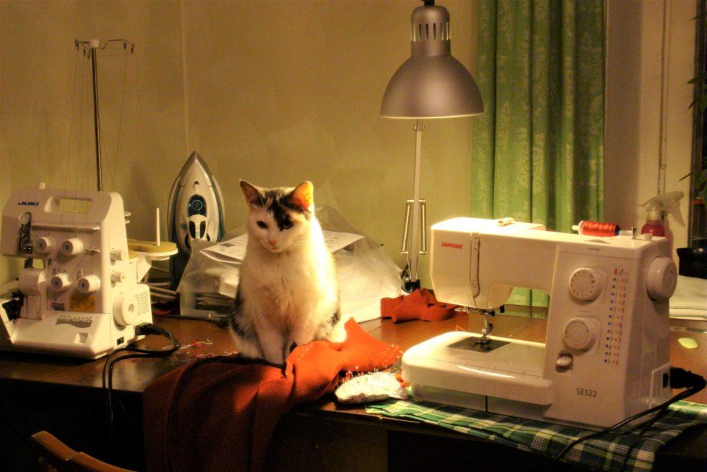 Швейная машинка Janome и оверлок Juki. ВТорой провал идеи открыть ателье по пошиву одежды | Мир в слове. Блог о том, как привить ребенку любовь к чтению